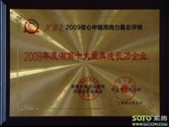 2008年度湘商十大最具成长力企业