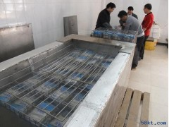 沉浸式水产品速冻机