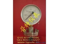 隔膜耐震压力表YTNP1