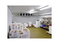 食品型冷库
