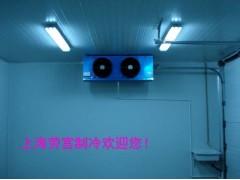 上海劳宫冷风机