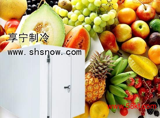 上海水果保鲜库
