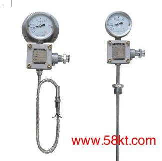 防爆测温仪表