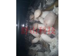 蘑菇房食用菌加湿器