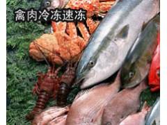 北京浩爽速冻水饺冷库, 超市速冻冷库、速冻食品厂冷库