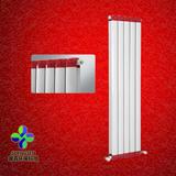 TLF铜铝复合散热器