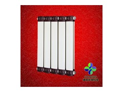 GLF钢铝复合散热器