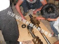 比泽尔螺杆式制冷压缩机
