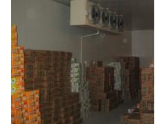 上海食品冷库
