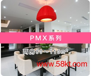 大金中央空调大金PMX系列