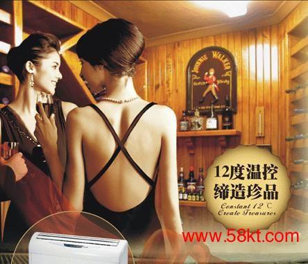 酒窖专用恒温恒湿精密空调