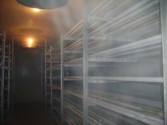 海鲜鲜肉速冻专用冷库