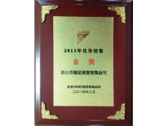 2013年优秀销售金奖
