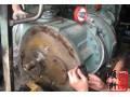 比泽尔螺杆压缩机冷冻油