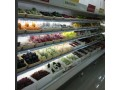 武汉梅花水果蔬菜保鲜柜