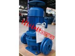 上海海龙牌管道泵