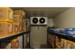 电子仪器仪表冷库
