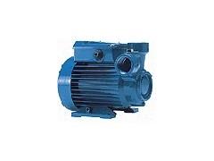 意大利佩德罗CT61泵