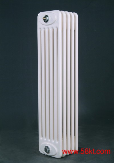 德恩普GZ钢制柱式散热器