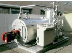 太康燃油气导热油炉