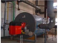 燃甲醇导热油炉