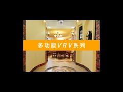 武汉大金中央空调多功能VRV系列