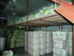 蔬菜冻库安装