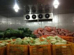 邢台蔬菜冷库