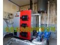 数控燃煤热水供暖锅炉