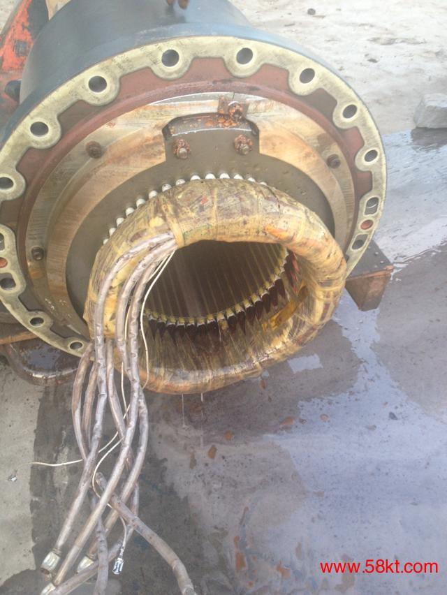 北京比泽尔电机损坏