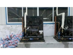 谷轮风冷冷库机组