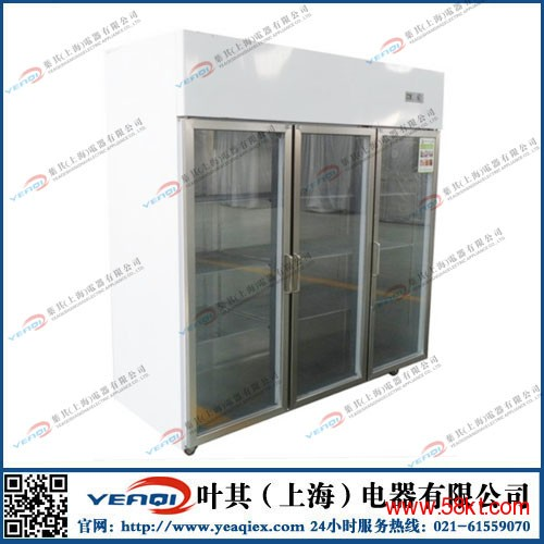 制药厂立式低温防爆冰柜