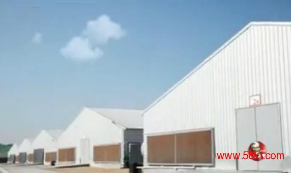 温室负压风机 温室降温风机 温室排气扇