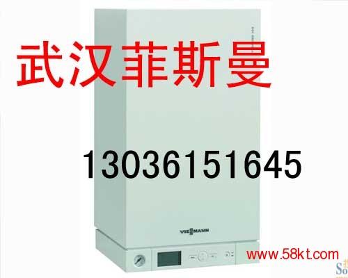武汉菲斯曼wb1c 26KW冷凝炉